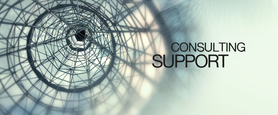 Consulting Support